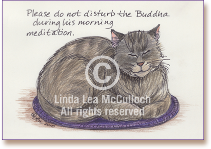 Buddha_Cat_sleeping